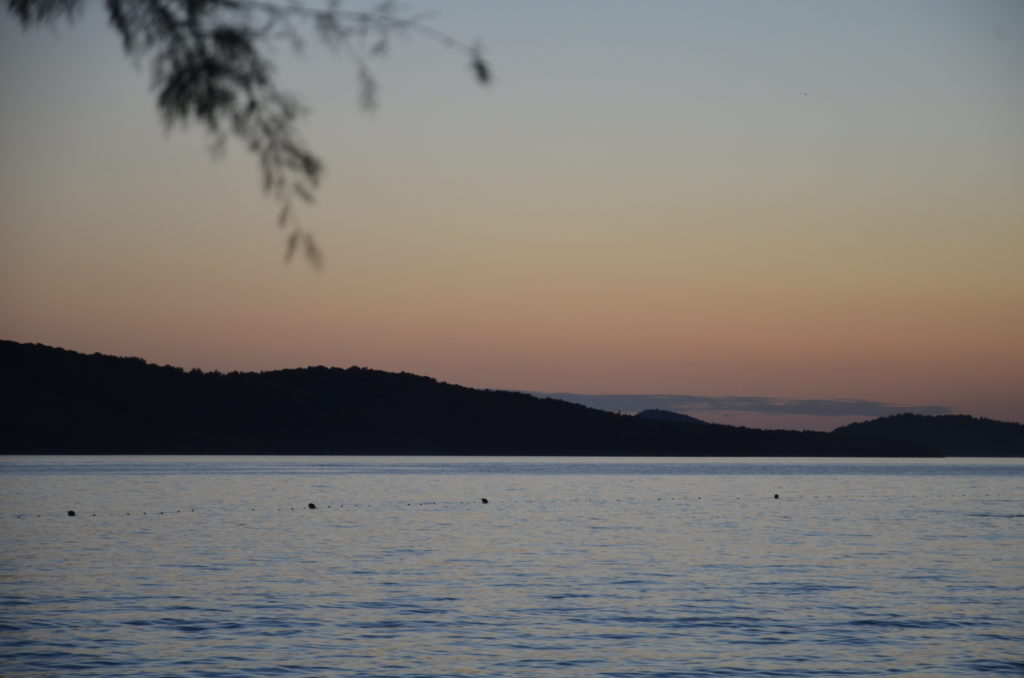 The sea in forefront, in the middle is an island, then a yellow and blue colored sky. A low hanging branch in the left corner.