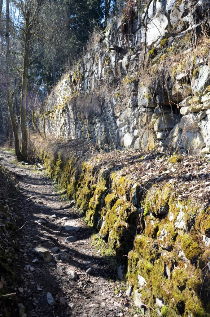 A path in the middle, running next to a wall, which has moss over it. On the other side trees. A wall you can look up close at the winter walks in Götzens.