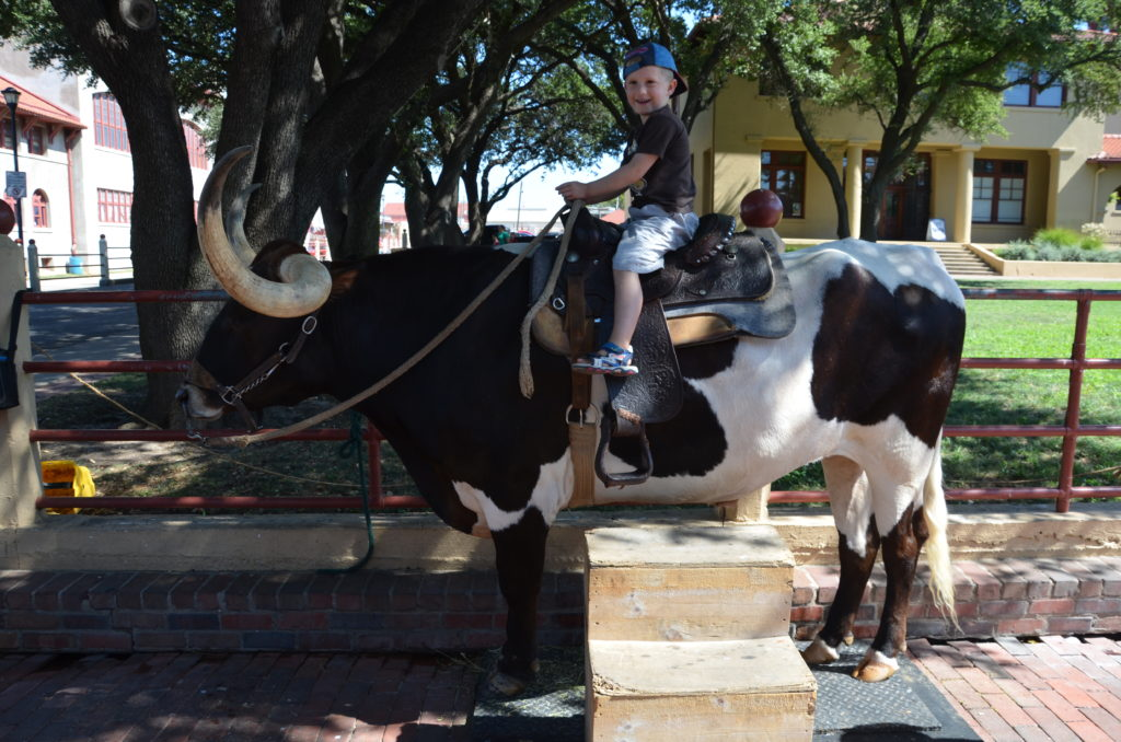 To show a picture of what there's to do at the stock yards, in this instance Yuri sitting on a longhorn.