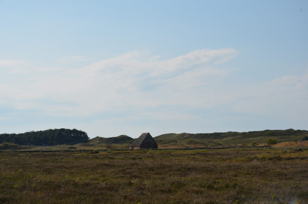 National Park Duinen van Texel. Vacation close to home