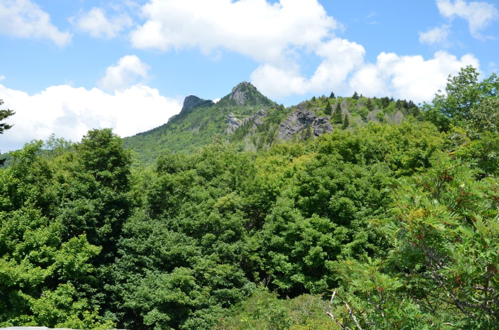 Grandfather Mountain, with forest on the foreground