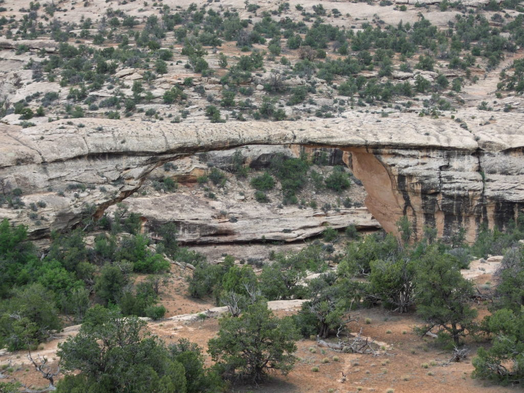 Owachomo Bridge, a natural bridge in Natural Bridges National Monument, the oldest.