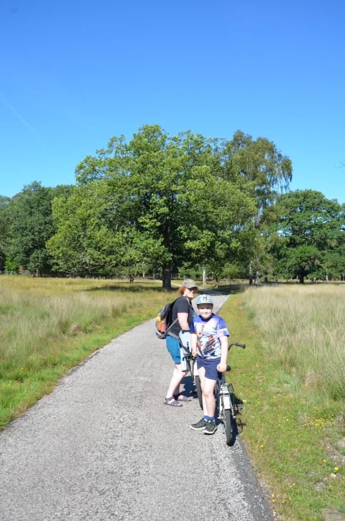 Biking at National Park De Hoge Veluwe