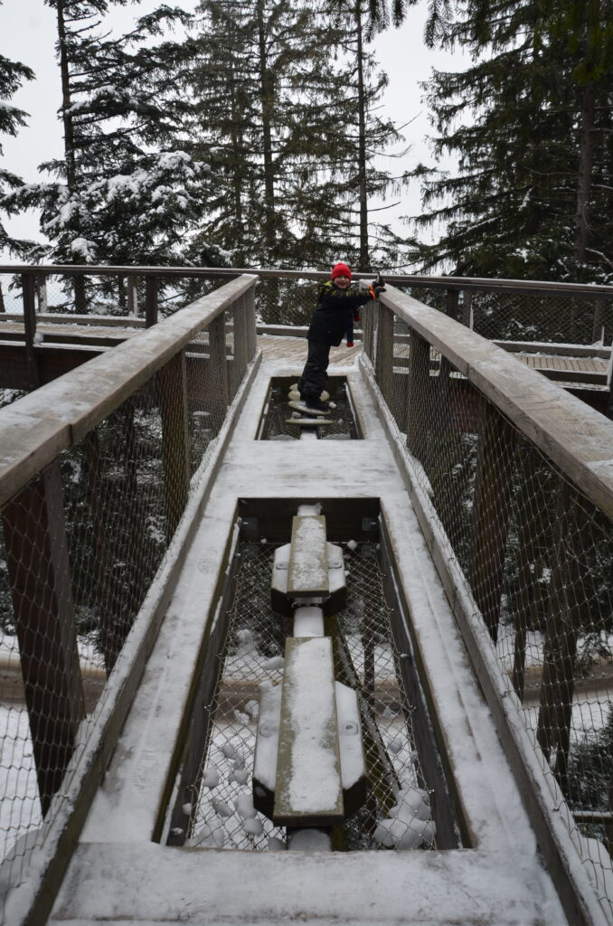 An activity on the treetop walkway. Yuri on an adventure track. Covered in snow.