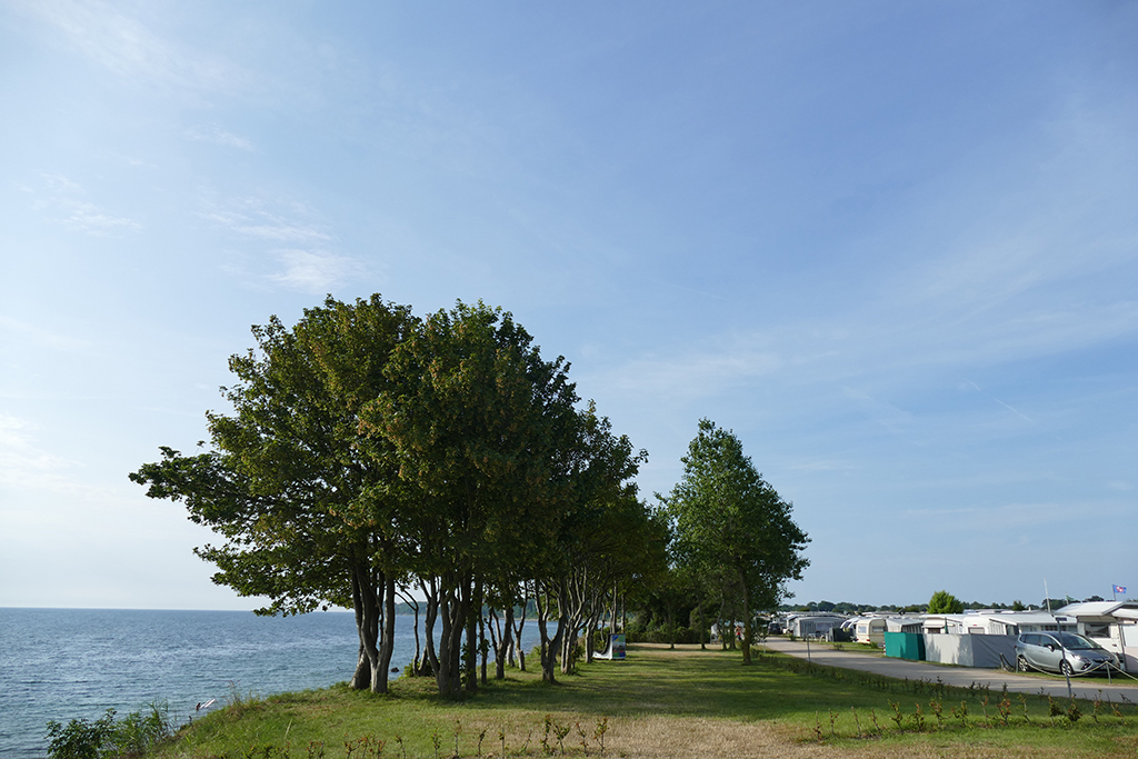 On the left part of the campsite, in the middle grass with trees and a path, on the right the sea.