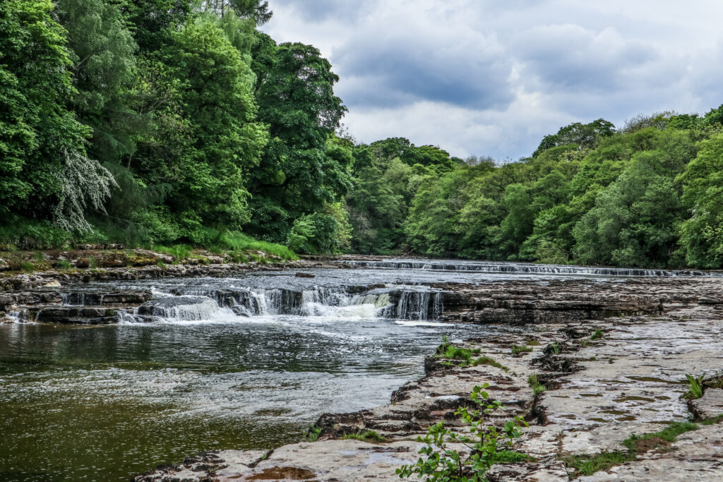 Aysgarth Falls, a river with a waterfall in the middle and forest around the river.