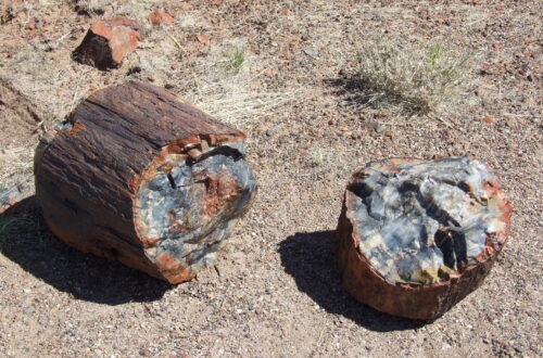 A broken petrified log, you can see the blue, red and white inside the log