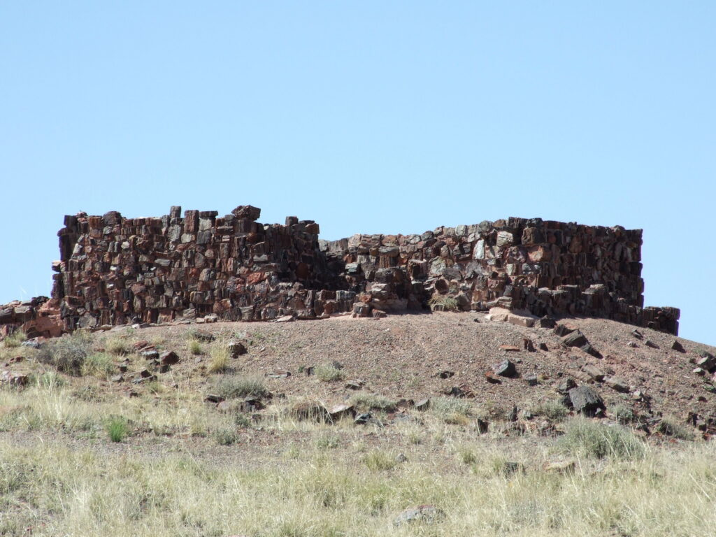 Agate House, almost completely build from petrified wood, standing on a small hill.
