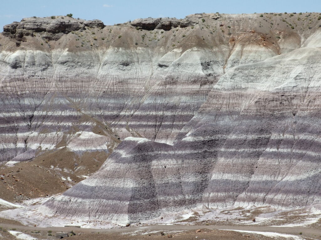 Blue Mesa, you can clearly and beautifully see the different layers of colors in the badlands.
