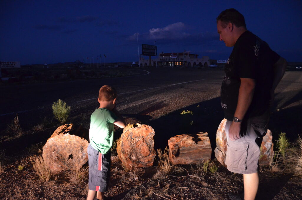 The park was already closed, showing Yuri some petrified logs outside. The logs (4 pieces)are lit up by the car headlights. Yuri and Paul stand in front of them.