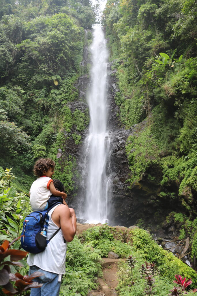 Melanting Waterfall a small(ler) fall dropping down deep surrounded by lots of lush greens. A man with a child on his shoulders looking at the fall, with their backs to us