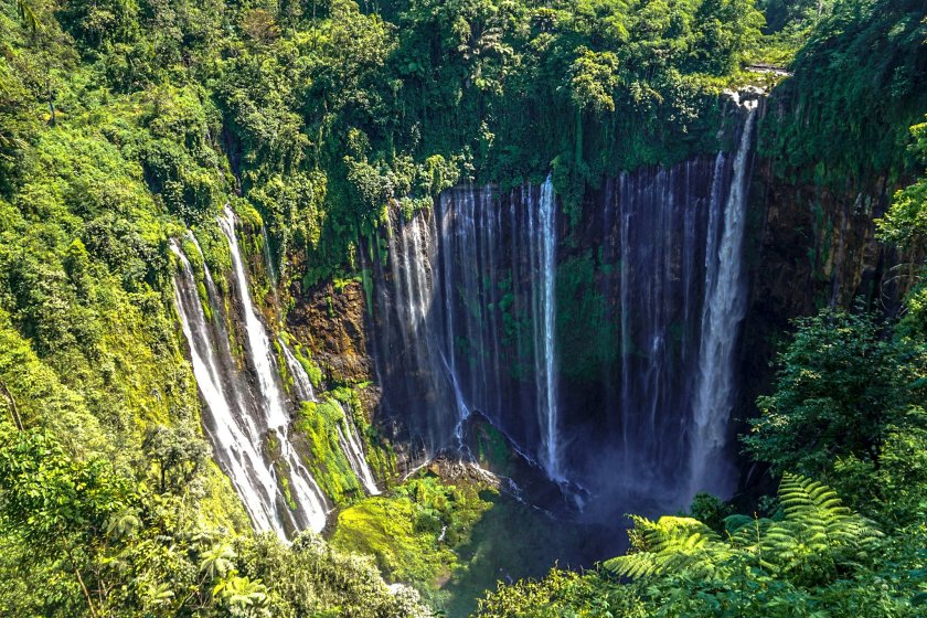 Tumpak Sewu Waterfall, multiple streams flowing and dropping down in between lush green