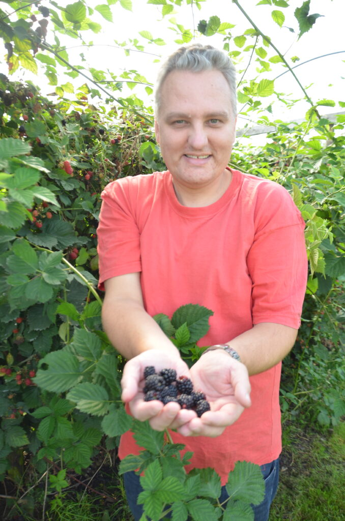 Berry picking in Twente, Paul holding 2 hands full with blackberries, between the branches