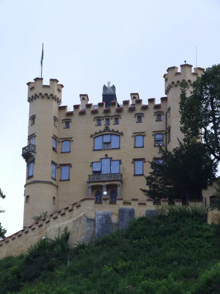 A swan on top of Hohenschwangau castle