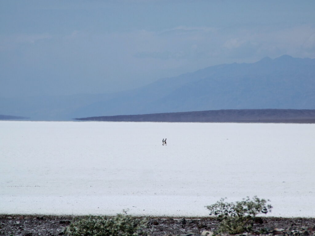 Badwater Basin at Death Valley, the salt flats with two people in the middle walking on it. Mountains in the distance.