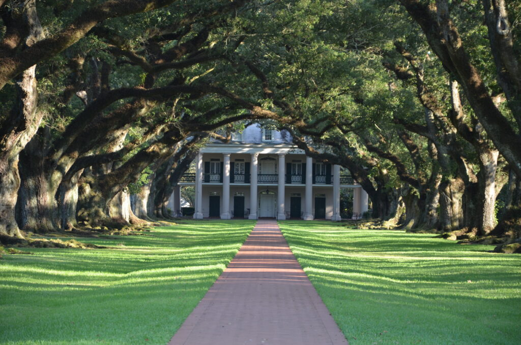 Oak Alley Plantation, as seen from the street, the plantation at the end of a row of oaks, driving from Orlando to San Francisco