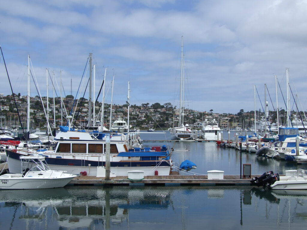 San Diego Harbor, in front small yachts, in the back houses against a hill