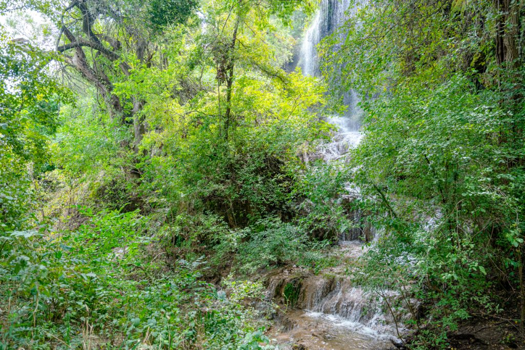 Gorman Falls by Lone Star Travel Guide, between the trees you see a waterfall cascading down