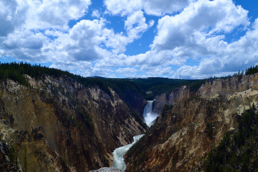 Lower Falls of the Yellowstone by Trip Scholars,  you see an overview of the Yellowstone Canyon with the river running through it and in the back the waterfall