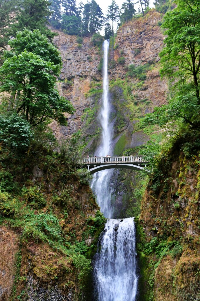 Multnomah Falls by World Adventurists, a steep and high waterfall, with two drops, a bridge goes over the second drop in the middle of the photo